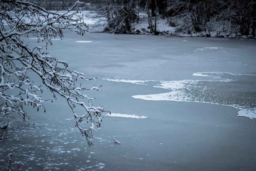 talvi3