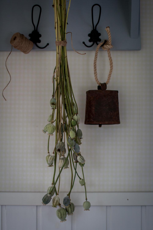 Syyspuhteita – Koristeita omasta pihasta